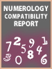 Numerology Compatibility Report